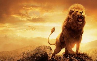 Rugissez comme un lion du Vedanta !