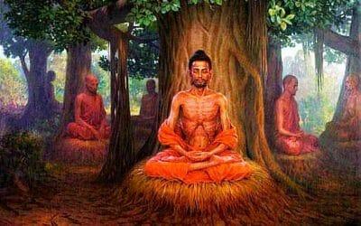Le renard et la tortue : la leçon du Bouddha